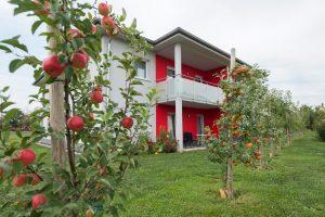 Neues Gästehaus mit modernen Appartements